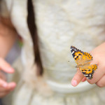 Preschool student and butterfly in green house